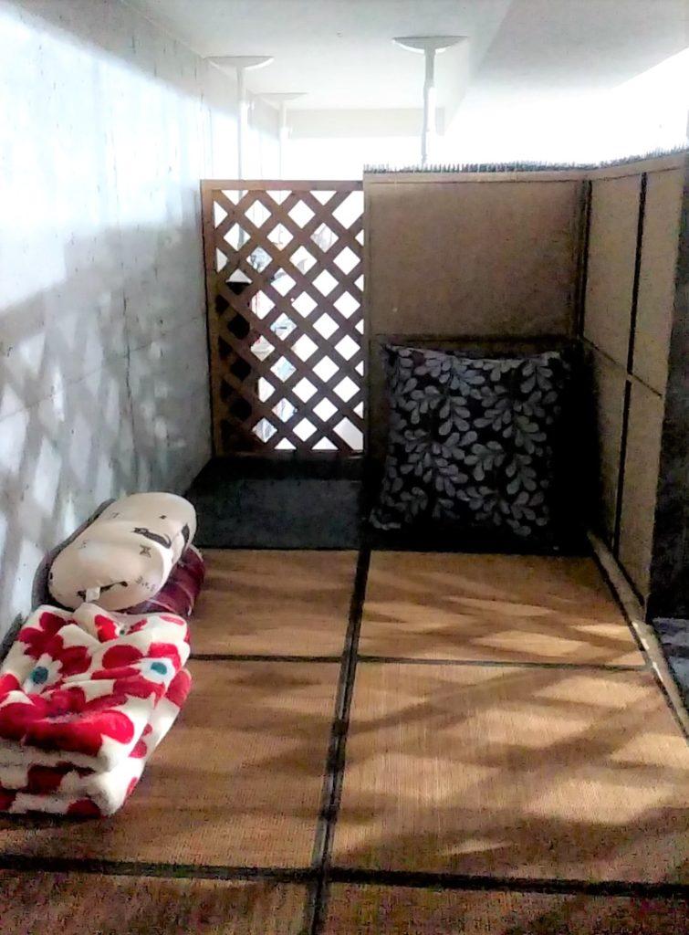 猫カフェ肉灸二階2