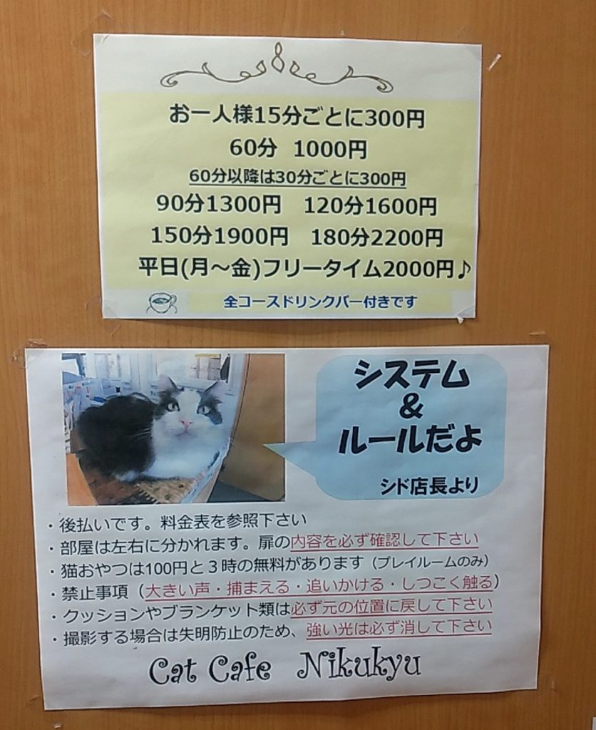 猫カフェ肉灸システム&ルール