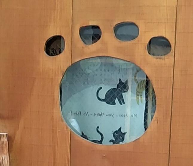 猫カフェ肉灸足跡型ドア