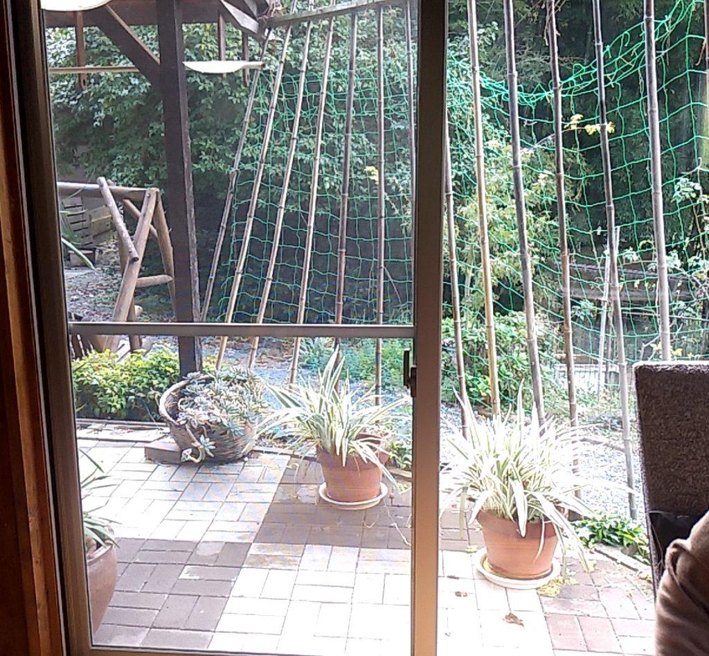 カフェ安(あん)窓の風景