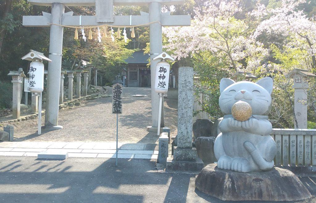 宇佐神社のねこ1