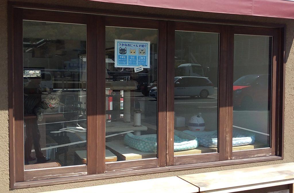 『きたなだ海の駅』駅長室の窓