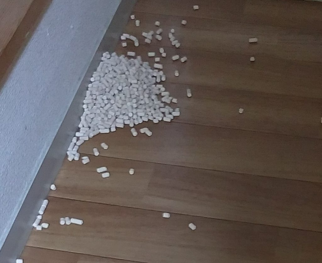 散乱した猫の砂2