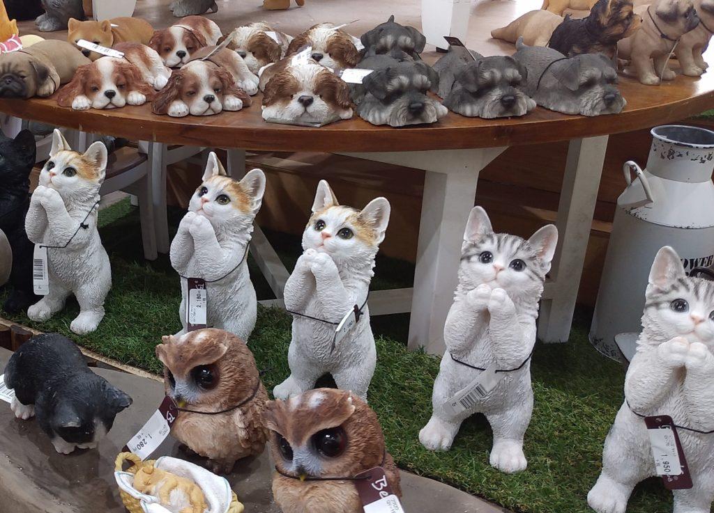 JOYGARDENファニチャーお願い猫