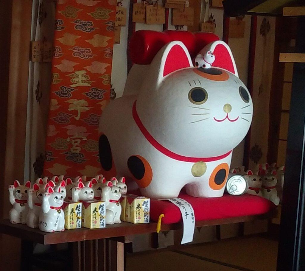 『王子神社』の猫2