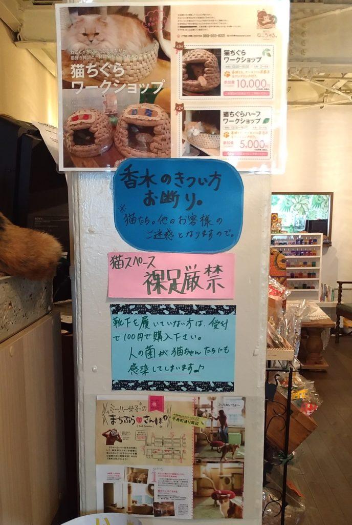 『猫カフェ ねこちゃる』注意書き