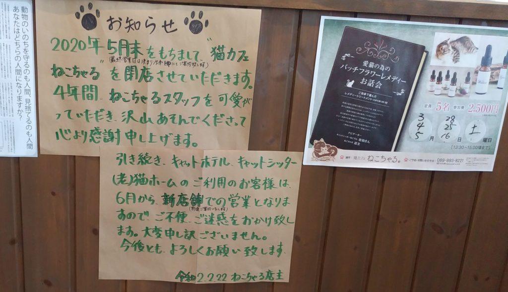 『猫カフェ ねこちゃる』閉店お知らせ