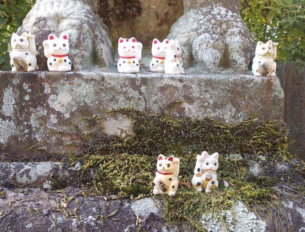 『白峰寺』狛犬と招き猫2