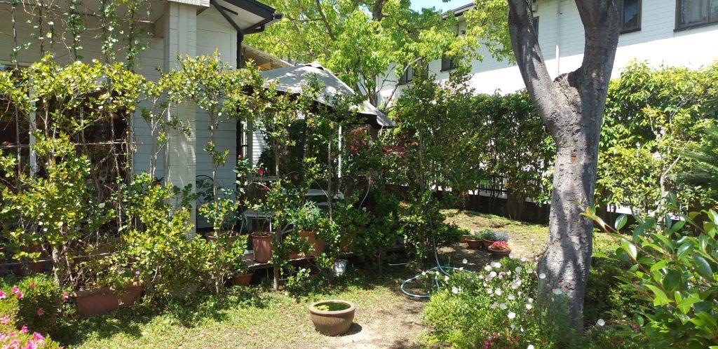REIの庭