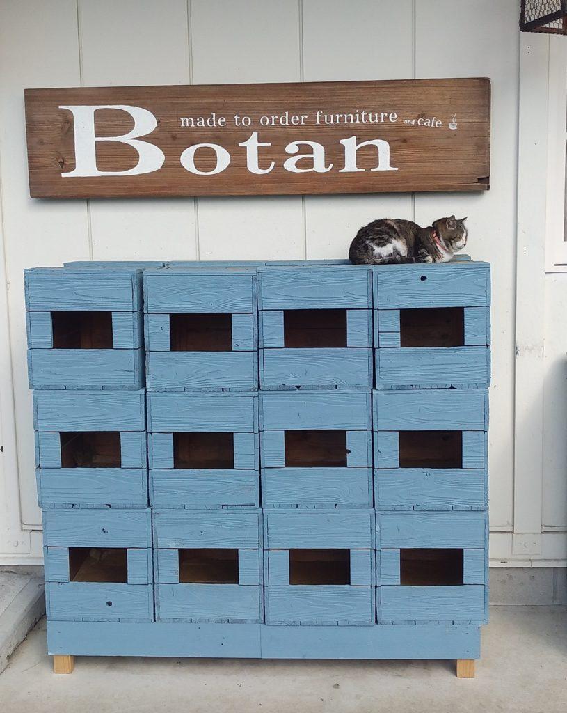 Botan看板と猫マンション