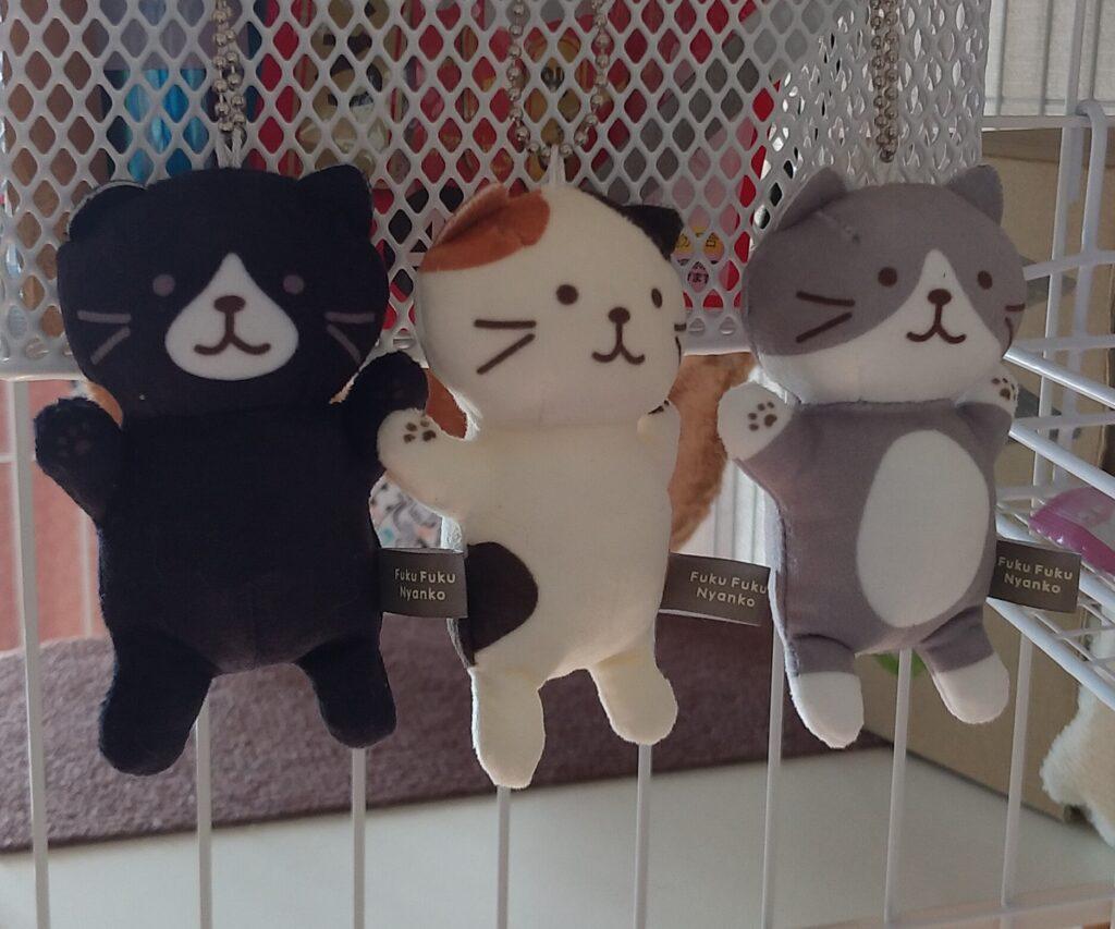 Fuku Fuku Nyanko飾った3匹