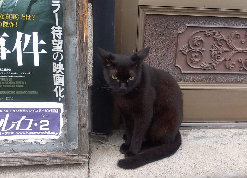 『映画看板と黒猫』