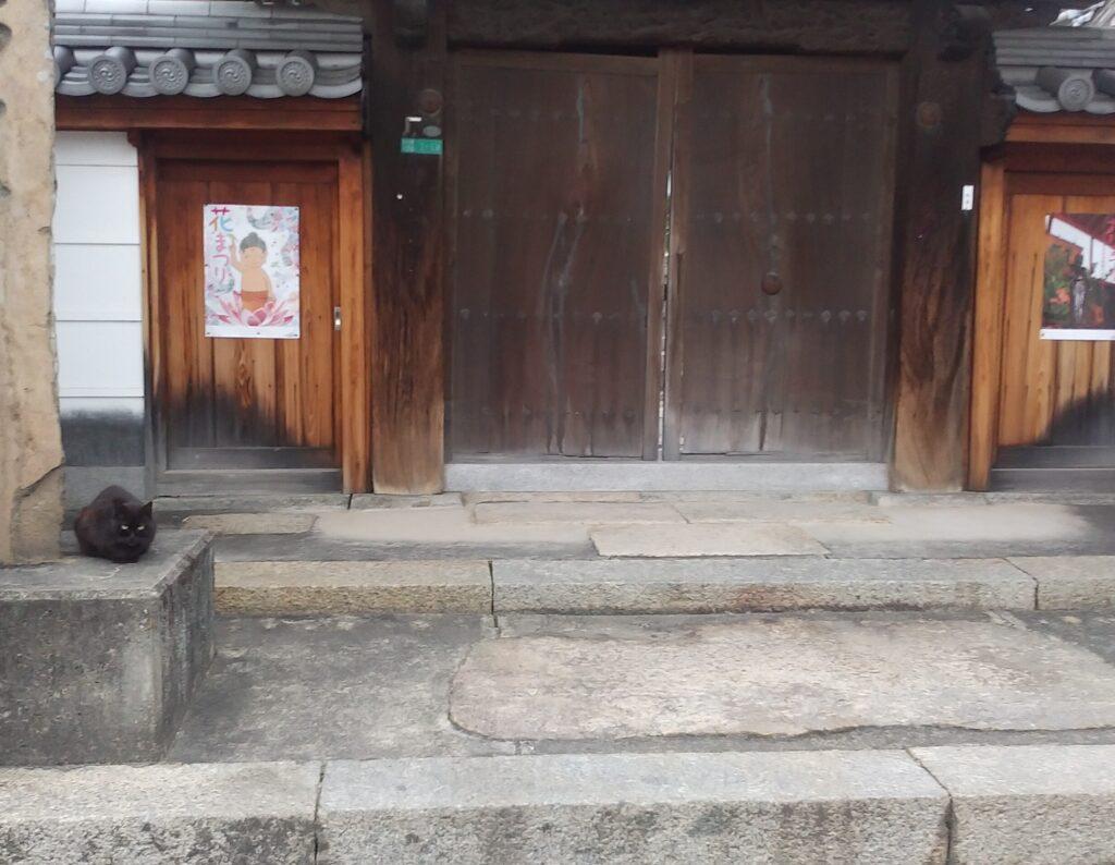 お寺のくろ1