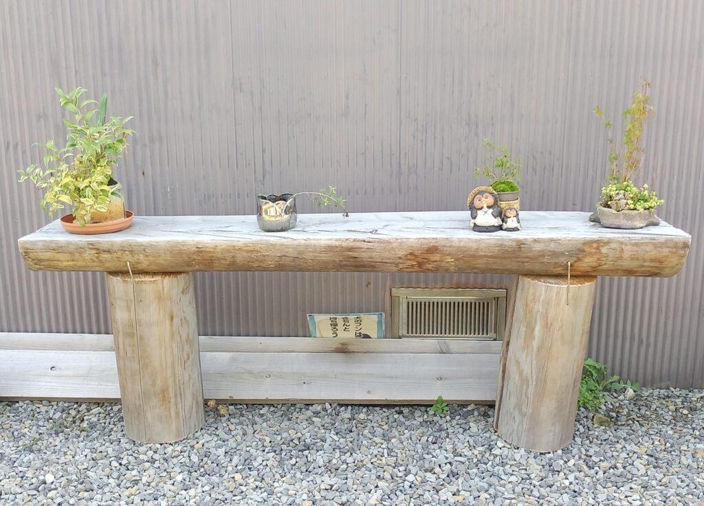 清水温泉丸太上の植木と狸