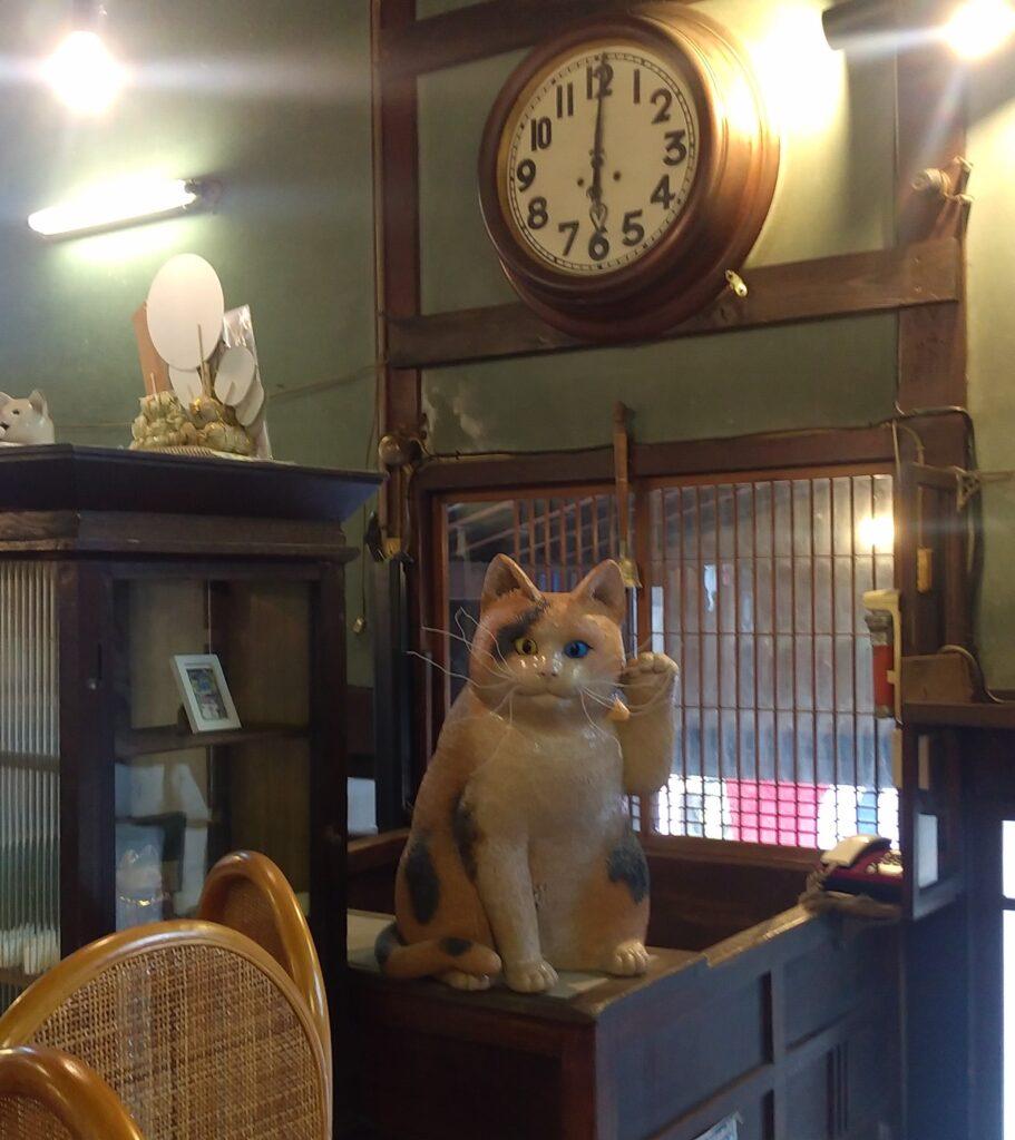清水温泉番台の猫