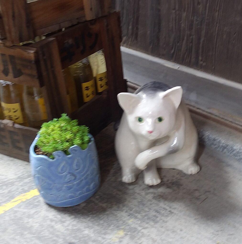 清水温泉猫の置物